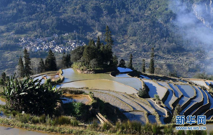 ハニ棚田の冬 雲南省紅河